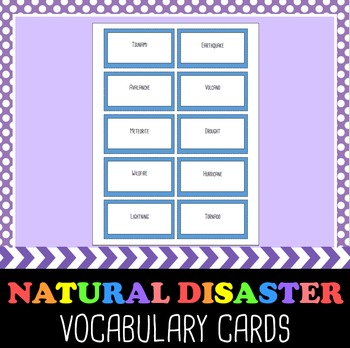 Natural Disaster Vocab Cards