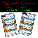 Natural Disaster Word Wall