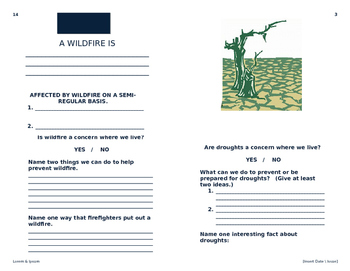 Natural Disasters Booklet