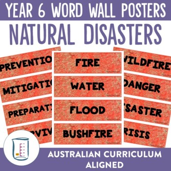 Natural Disasters Word Wall Posters