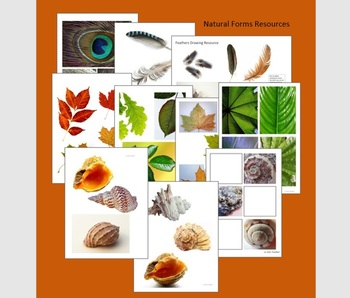 Natural Forms Drawing and Painting Resources