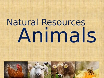Natural Resources (Animals) Powerpoint *EDITABLE* *FREE*
