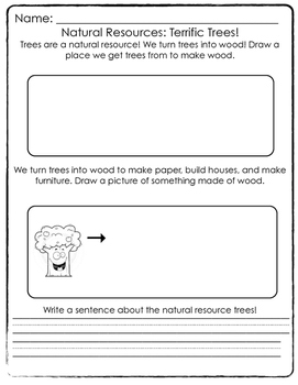 natural resources trees worksheet by thefirstgradelife tpt. Black Bedroom Furniture Sets. Home Design Ideas