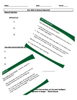 Natural Section notes and powerpoint