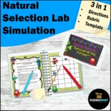 Natural Selection Activity | Middle School Science