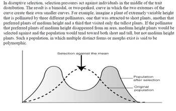 Natural Selection Activity (directional, stabilizing and diversifying selection)