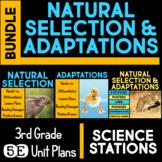 Natural Selection & Adaptations 5E Unit AND Science Station BUNDLE 3rd Grade