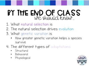 Natural Selection + Adaptations Guided Notes