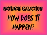 Natural Selection Assignment