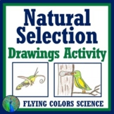 Natural Selection Assignment (Evolution - Middle School) N