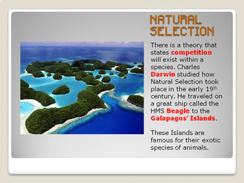 Natural Selection Bundle