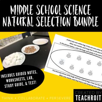 Natural Selection Bundle: Test, Study Guide, Notes, Handouts & Lab