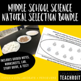 Natural Selection Bundle: Test, Study Guide, Notes, Handou