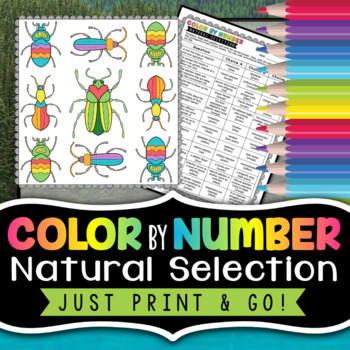 Natural Selection - Color By Number