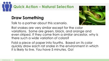 Natural Selection Complete 5E Lesson Plan