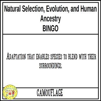 Natural Selection, Evolution, and Human Ancestry BINGO