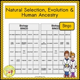 Natural Selection, Evolution, and Human Ancestry BINGO