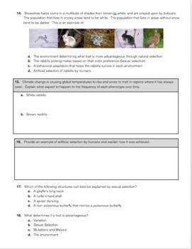 Natural Selection & Evolution Exam
