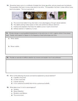 Natural Selection & Evolution Exam