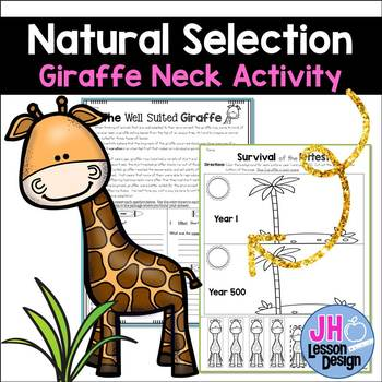 Giraffes Natural Selection