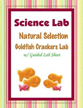 Natural Selection Goldfish Cracker {Hands-on Lab}