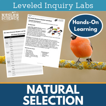 Natural Selection Inquiry Labs