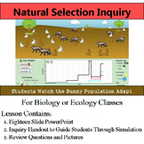 Natural Selection Inquiry - Online Guided Simulation on Effects of Adaptations