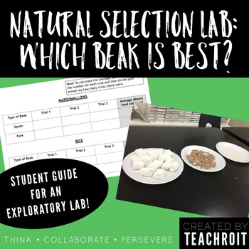 Natural Selection Lab: Which Beak is Best?