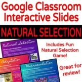 Natural Selection Lesson & Activity for the Google Classroom