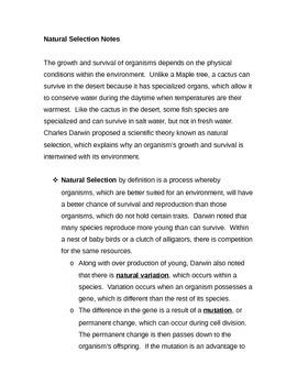 Natural Selection Notes