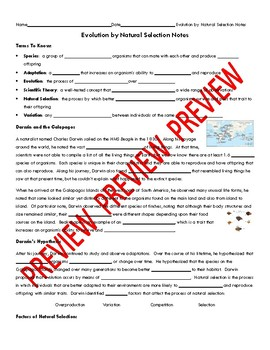 Natural Selection Notes Section