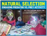 Natural Selection: Predator vs. Prey Activity