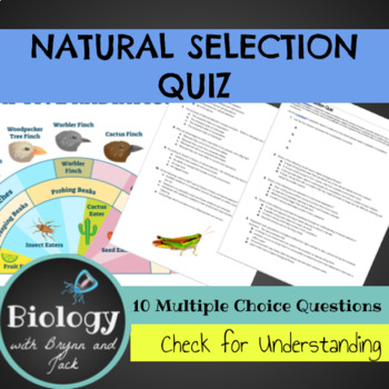 Natural Selection Quiz