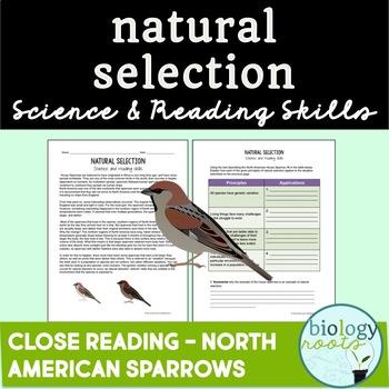 evolution by natural selection worksheet