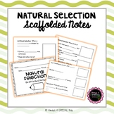 Natural Selection Scaffolded Notes