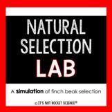 Natural Selection Simulation Lab