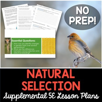Natural Selection - Supplemental Lesson - No Lab
