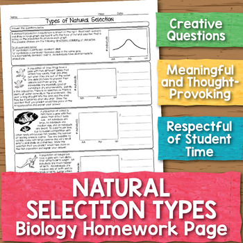 Natural Selection Types Biology Homework Worksheet By Science With