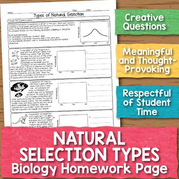 Natural Selection Types Biology Homework Worksheet