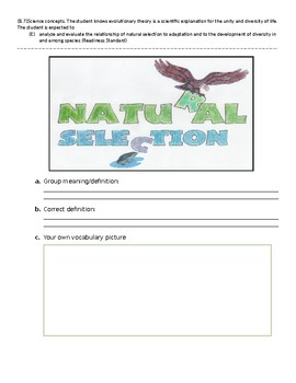 Natural Selection Vocabulary Picture / Word Wall