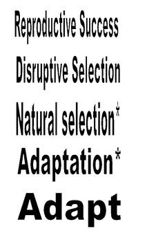 Natural Selection Vocabulary Word Wall
