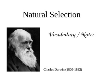 Natural Selection Vocabulary and Notes
