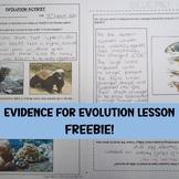 Natural Selection PPT & Worksheet: Free Resource!