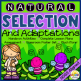 Natural Selection and Adaptations: Full Unit with Reading Passages