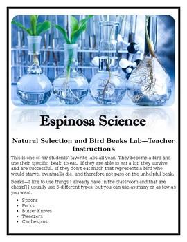 Natural Selection and Bird Beak Lab