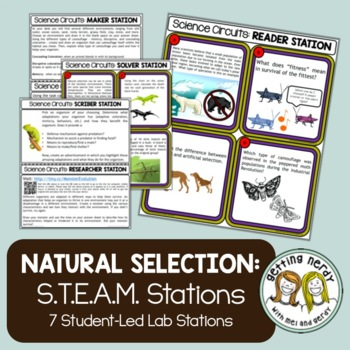 Natural Selection and Camouflage -  Evolution - Science Centers / Lab Stations