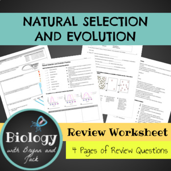 Natural Selection and Evolution Practice