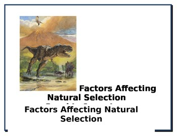 Natural Selection and Fossil Activities