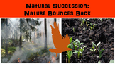 Natural Succession: Nature Bounces Back Lesson