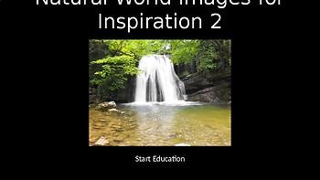 Natural World Volume 2 - 80 Copyright Free Photographs